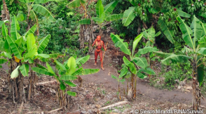 First-ever footage of Uncontacted Amazon Tribe released