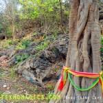 Monkey Outside Khao Luang Cave