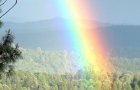 Viral Double Rainbow Video Nearing 33 Million Views!